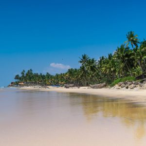 what is the best season to visit Kerala