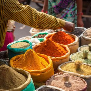 the best season to travel to india